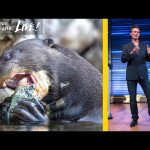 Inside the Amazon: A Photographer's Story – Nat Geo Live