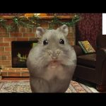Miniature Hamster Yule Log in 4K
