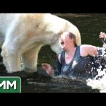 5 Dumbest Zoo Animal Encounters