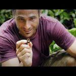 Forest Fast Food | Primal Survivor