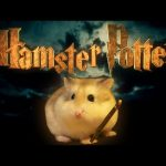 Hamster Potter – 'Harry Potter' with Hamsters