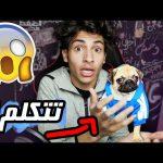 لا يفوتك !!! | My New Puppy