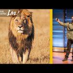 Filming Africa's Top Predators : Beyond 'Savage Kingdom' (Part 2)   Nat Geo Live
